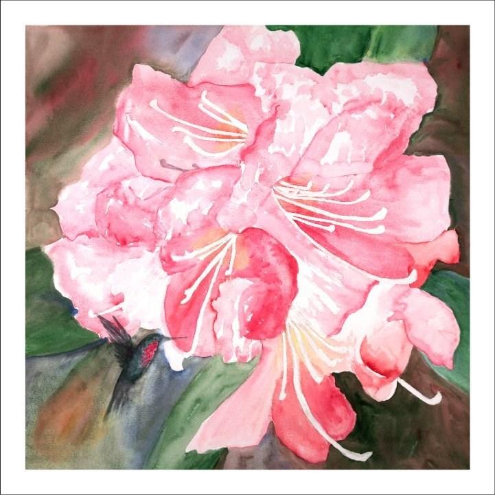 """Rhodie with Hummingbird"" original fine art by D Mae Wright"