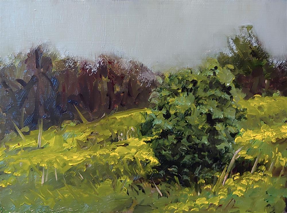 """""""Buffalo Creek Study"""" original fine art by Edward Watson"""