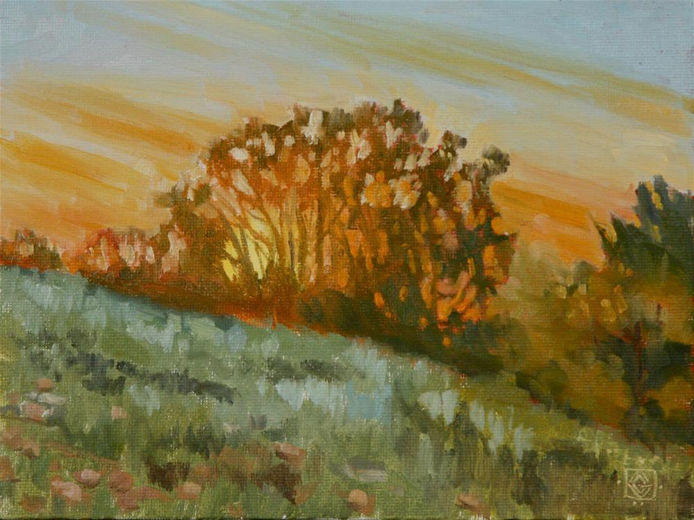"""Scrub Oak Sunset"" original fine art by Carol Granger"