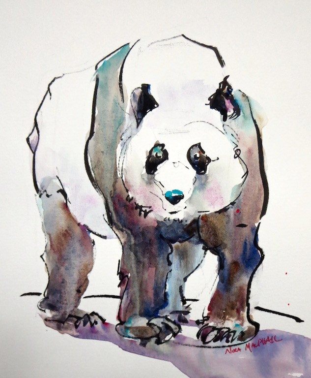 """Chester the Panda"" original fine art by Nora MacPhail"