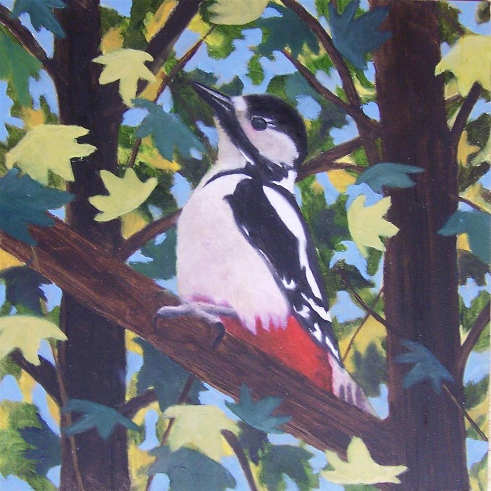 """""""Great Spotted Woodpecker"""" original fine art by John Marcum"""