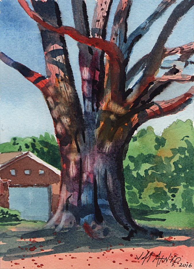 """Shadow Oak"" original fine art by Jeff Atnip"
