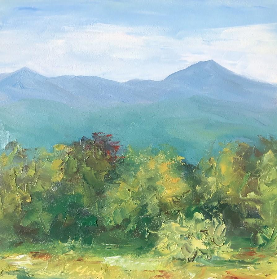 """#130  - Turning of the Season - Stowe, VT"" original fine art by Sara Gray"