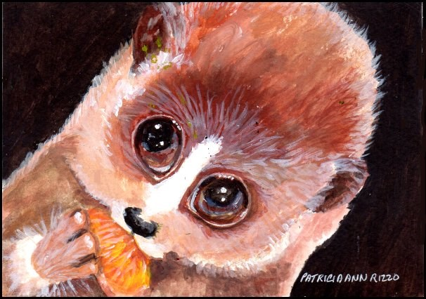 """Slow Lemur"" original fine art by Patricia Ann Rizzo"