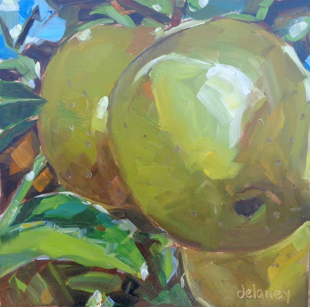 """GREEN APPLES"" original fine art by Jean Delaney"