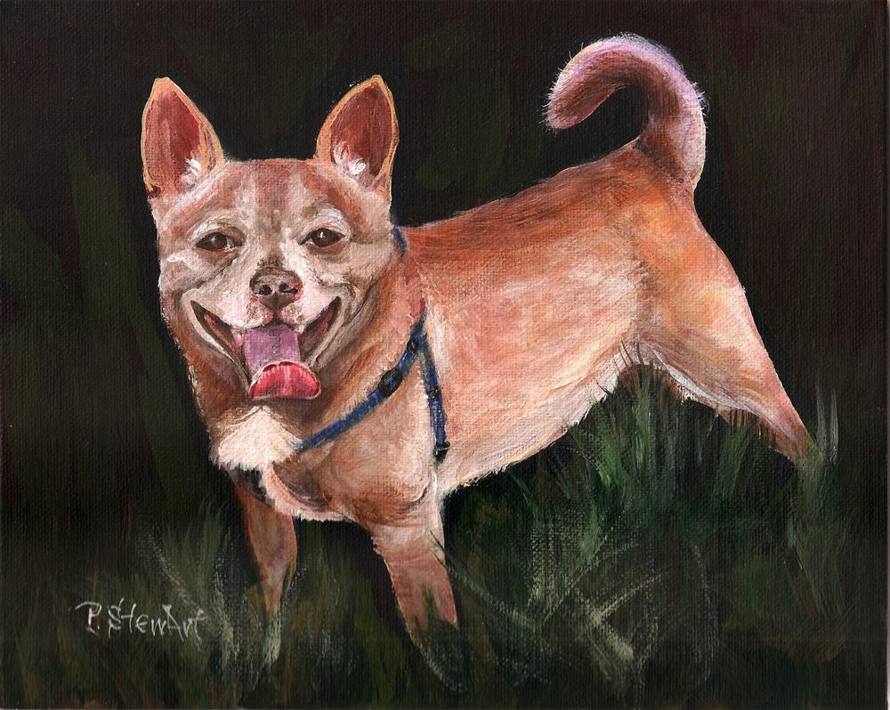 """8x10 Chihuahua Chipper Chip Acrylic Pet Portrait SFA by Penny StewArt"" original fine art by Penny Lee StewArt"