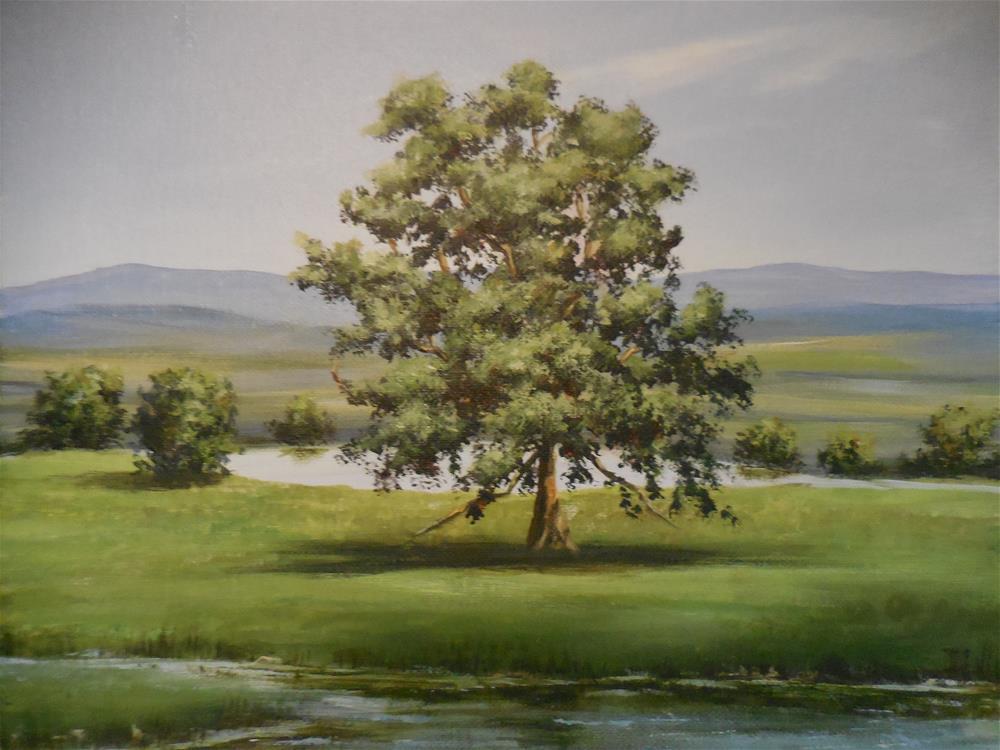 """""""The Lone Oak"""" original fine art by Terri Nicholson"""