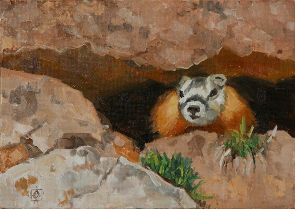 """""""Whistling Marmot"""" original fine art by Carol Granger"""