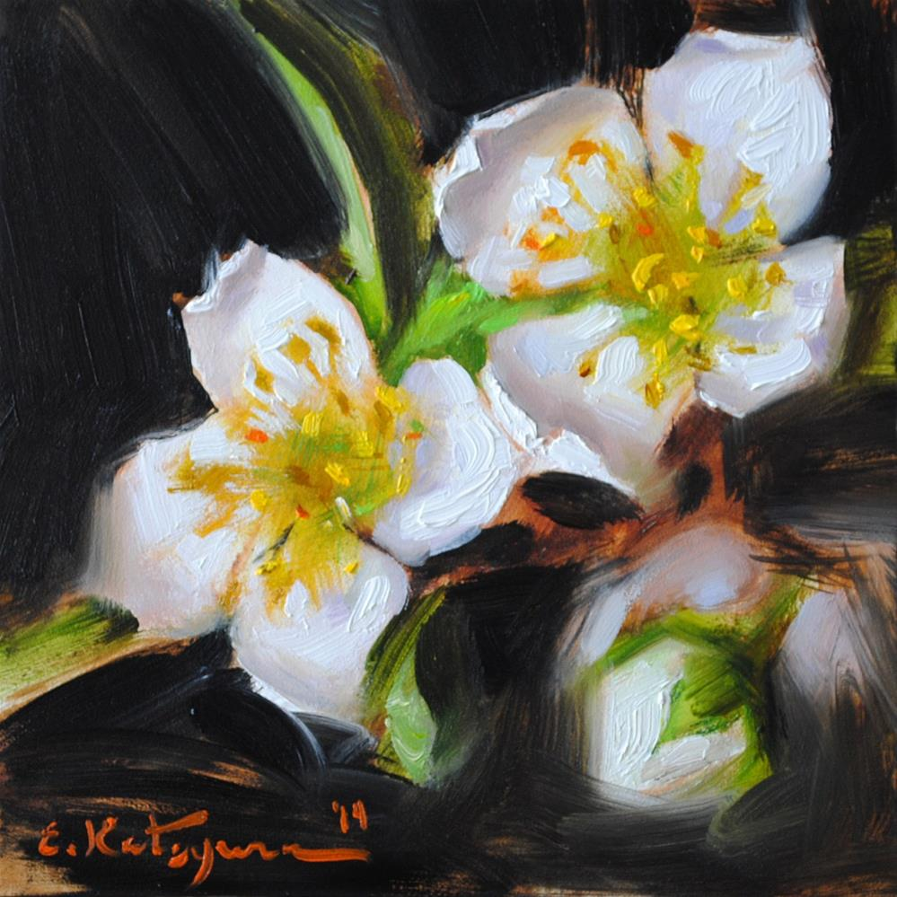 """Blossoms on Black"" original fine art by Elena Katsyura"