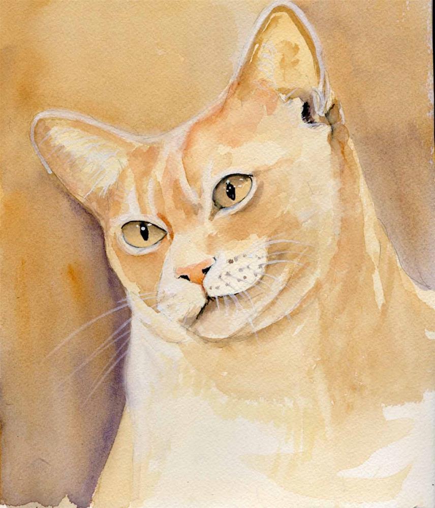"""Burmese Cat"" original fine art by Bunny Griffeth"