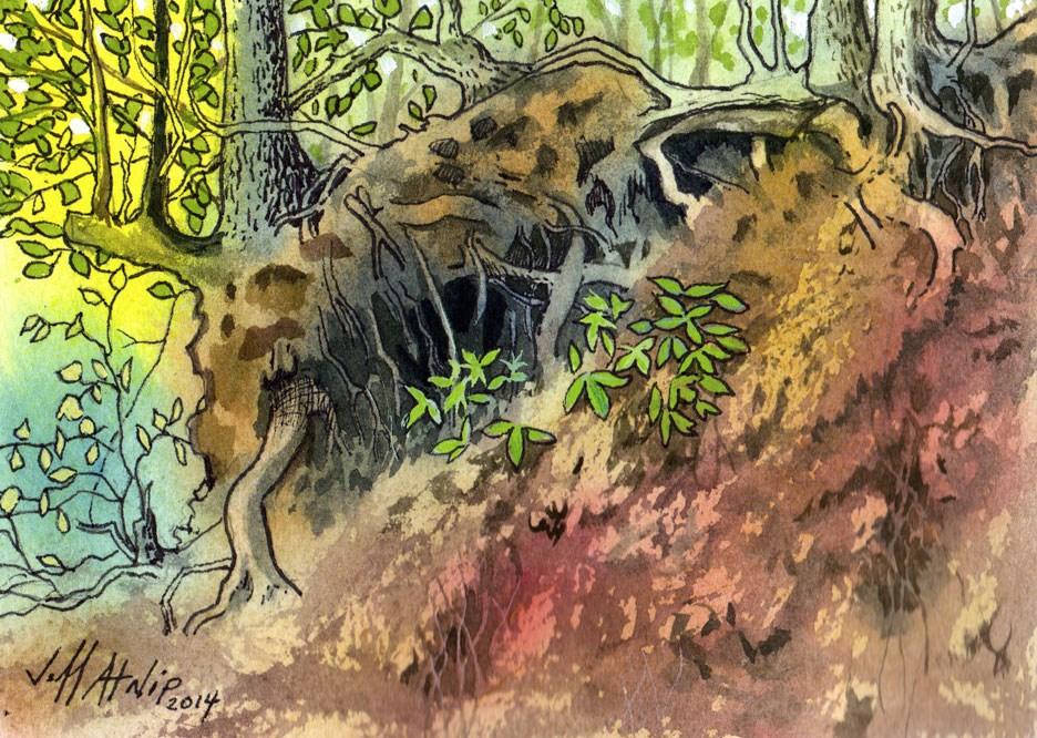 """Down By The Pond"" original fine art by Jeff Atnip"