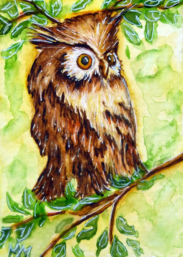 """Morning Owl"" original fine art by Monique Morin Matson"