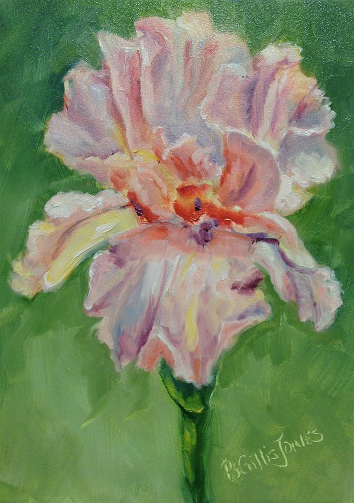 """""""Blushing Iris"""" original fine art by Barbara Gillis Joines"""