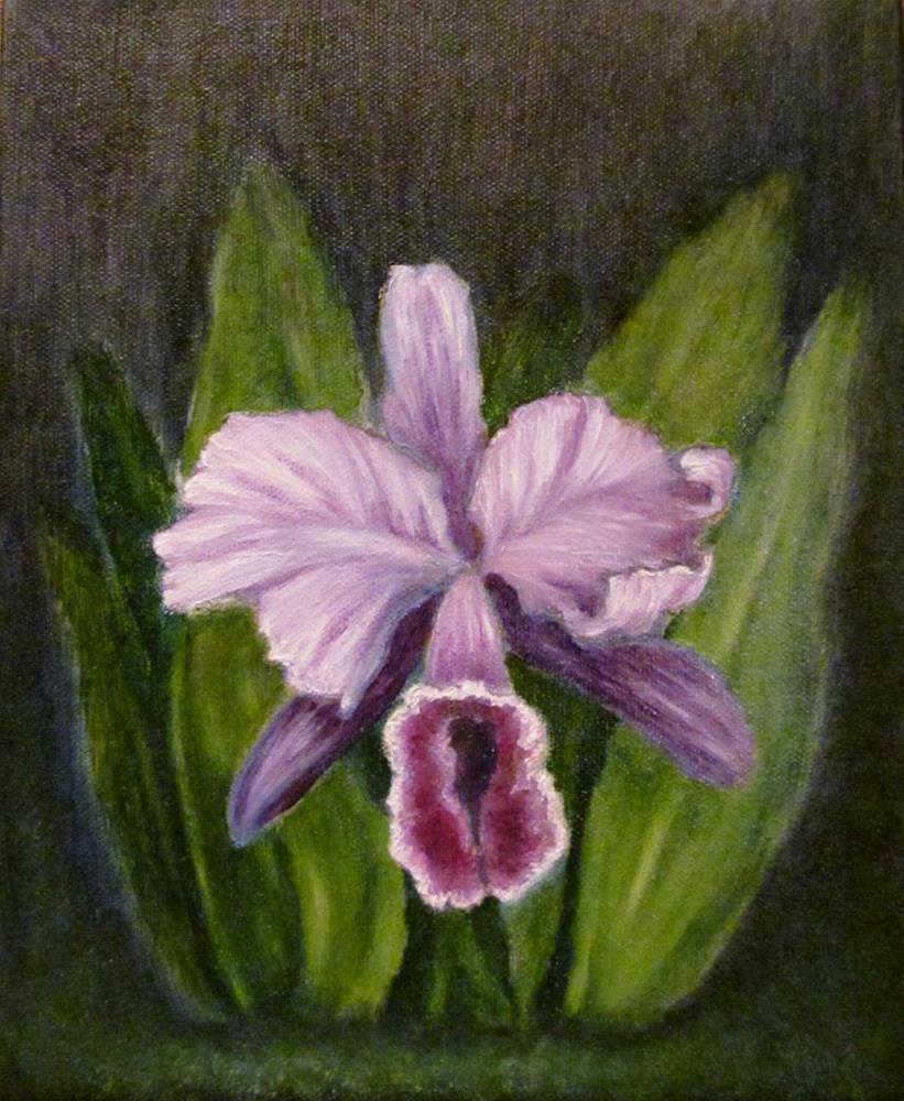 """Iris Study v1--Oil on canvas"" original fine art by Mary Sylvia Hines"