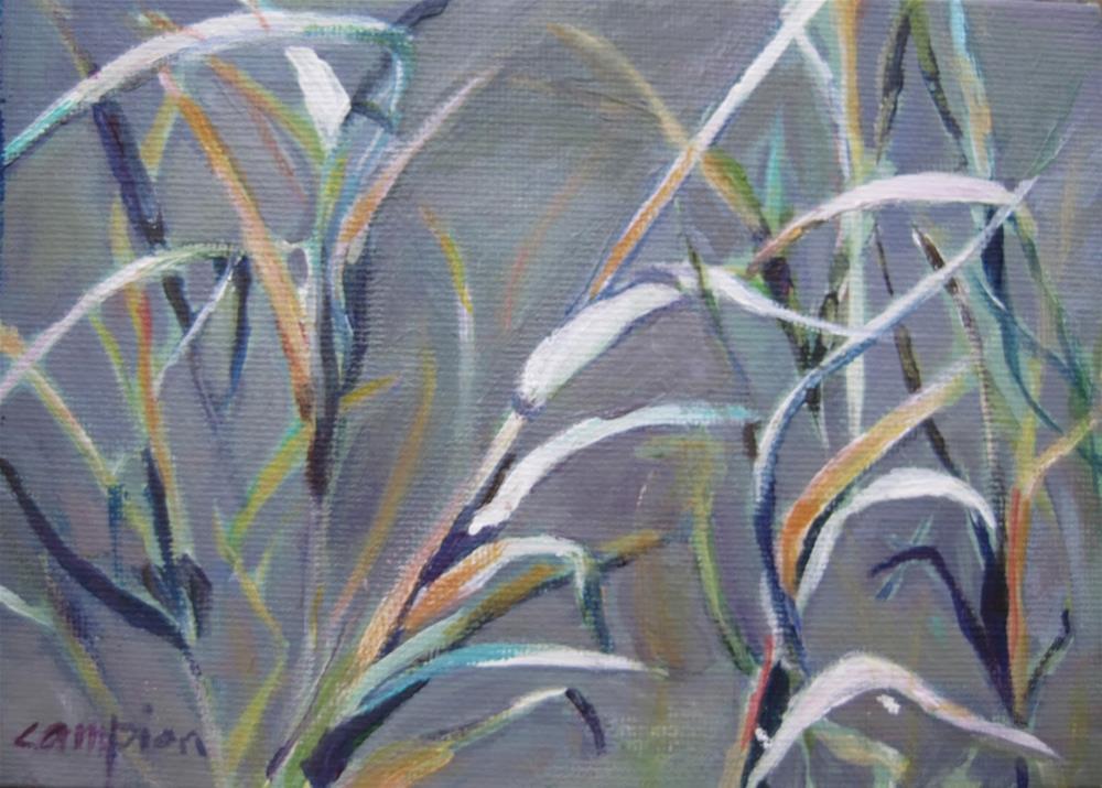 """""""198 Marsh Grass"""" original fine art by Diane Campion"""