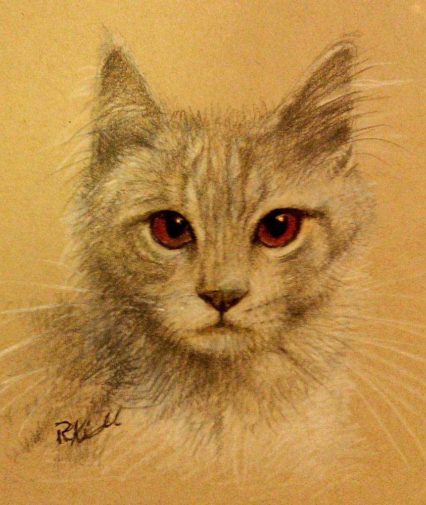 """Tabby Cat"" original fine art by Bob Kimball"