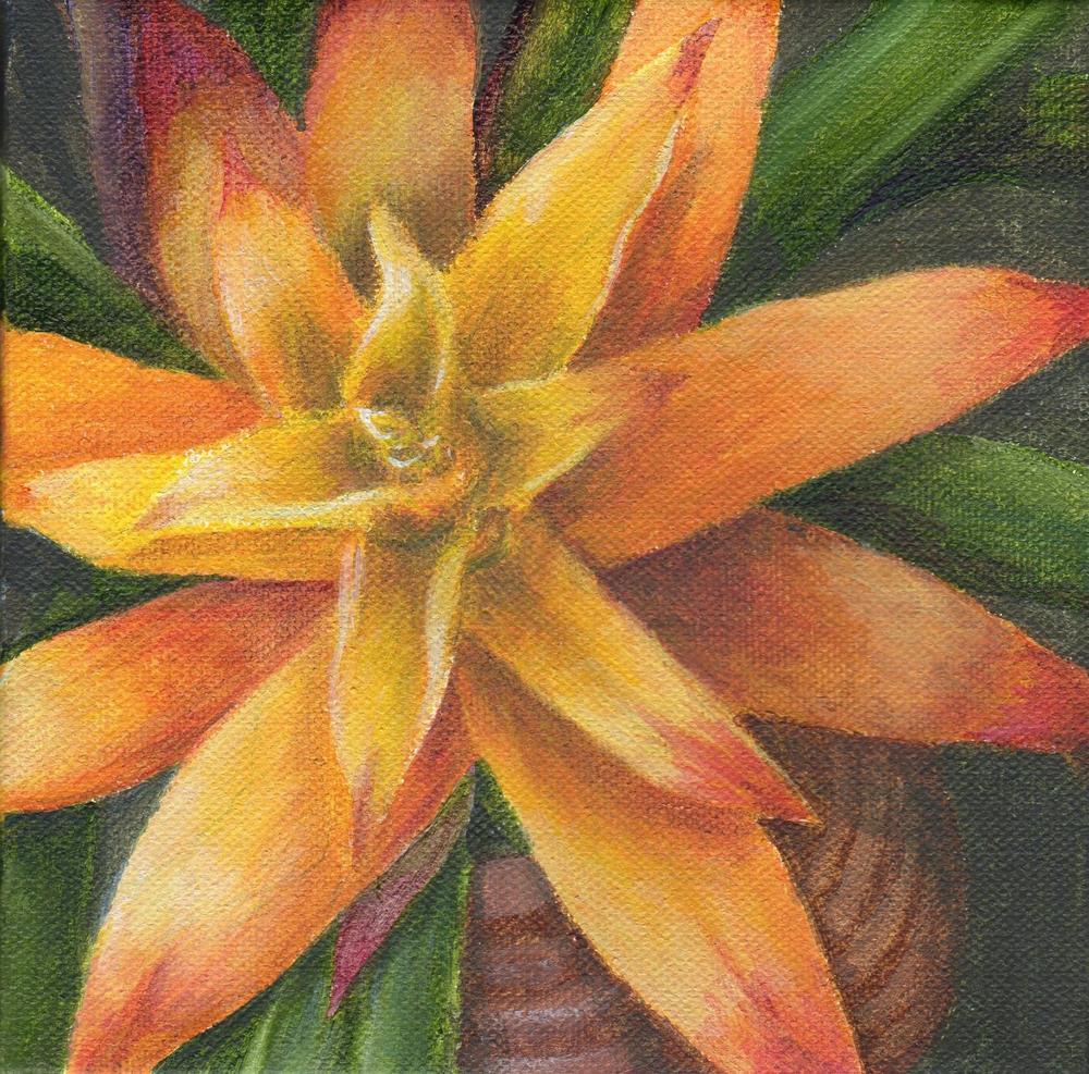 """""""Serenade"""" original fine art by Debbie Shirley"""