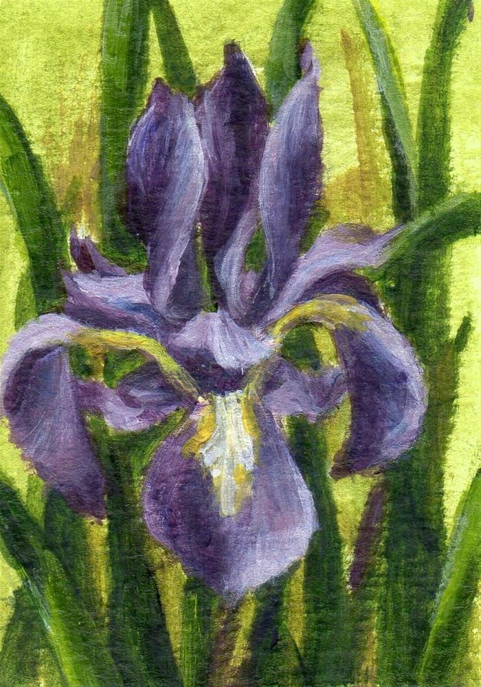 """""""From the Grey"""" original fine art by Debbie Shirley"""