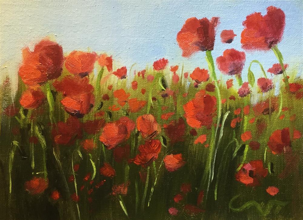 """""""Red Poppies"""" original fine art by Sharon Abbott-Furze"""