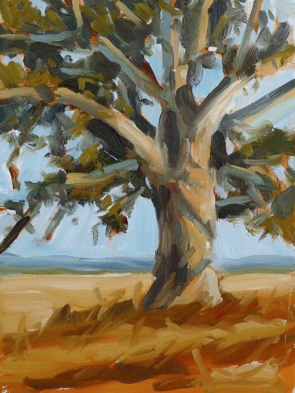 """""""Sunlit Oak"""" original fine art by Adam Houston"""