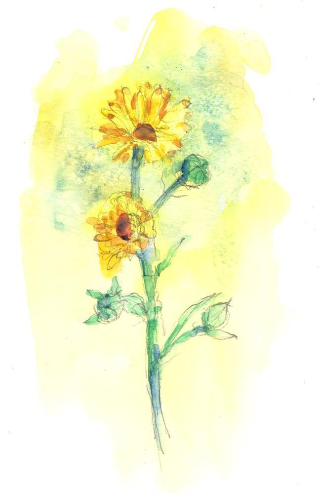 """Yellow Flowers in May"" original fine art by Marlene Lee"