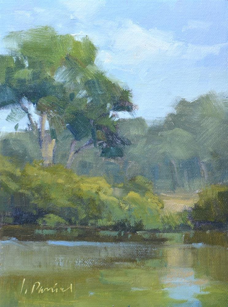 """""""Quiet Pond - Georgia Coast"""" original fine art by Laurel Daniel"""