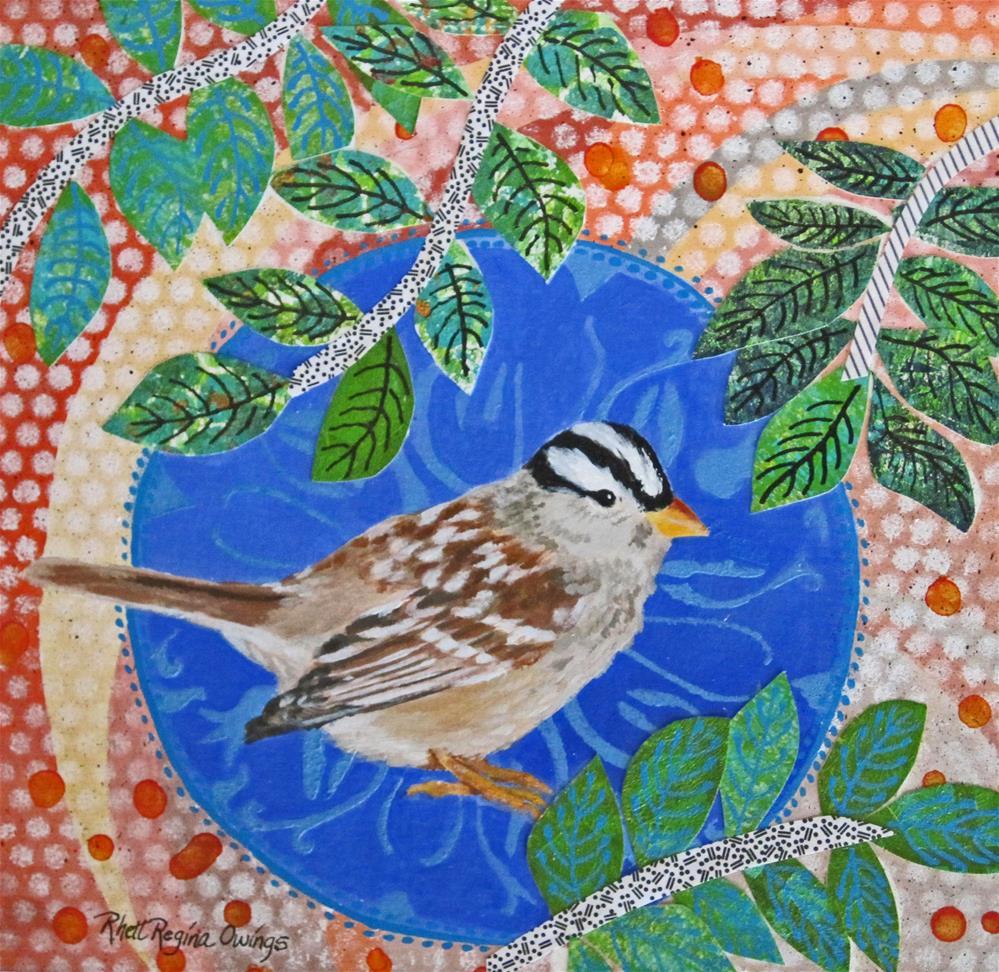 """""""White Crowned Sparrow"""" original fine art by Rhett Regina Owings"""