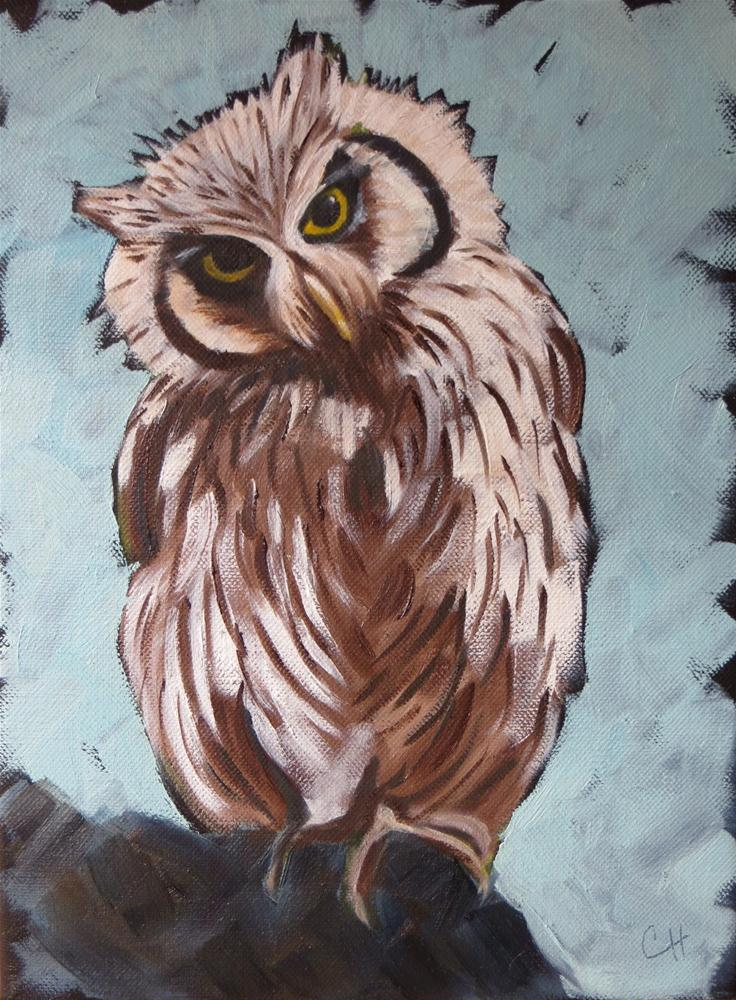 """""""Whoo Me?"""" original fine art by Claire Henning"""