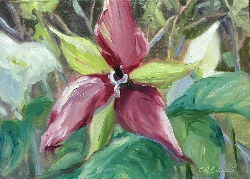 """""""Red Trillium"""" original fine art by Carolynn Doan"""