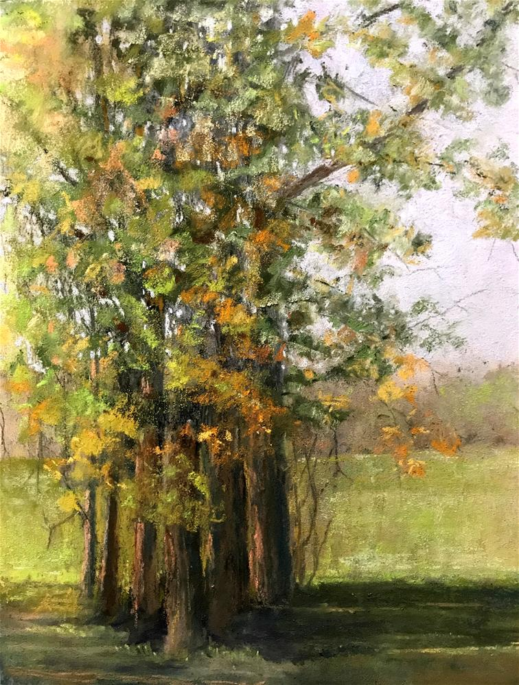 """group of trees"" original fine art by Betty Argiros"