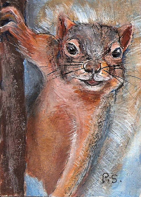 """""""ACEO Cheeky Squirrel Critter with Defiant Attitude by Penny Lee StewArt"""" original fine art by Penny Lee StewArt"""