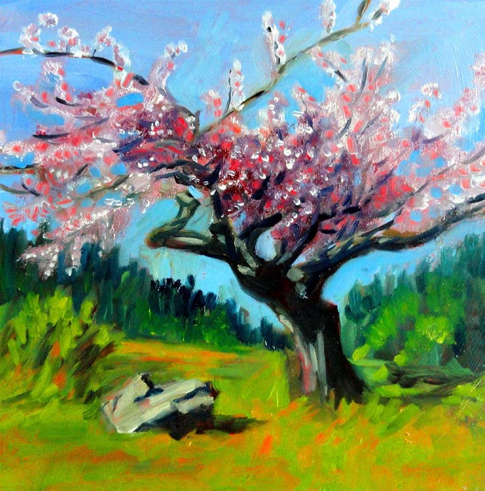 """Cherry Blossoms"" original fine art by Cietha Wilson"