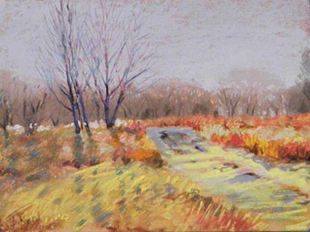 """""""Backlight trail"""" original fine art by Toby Reid"""