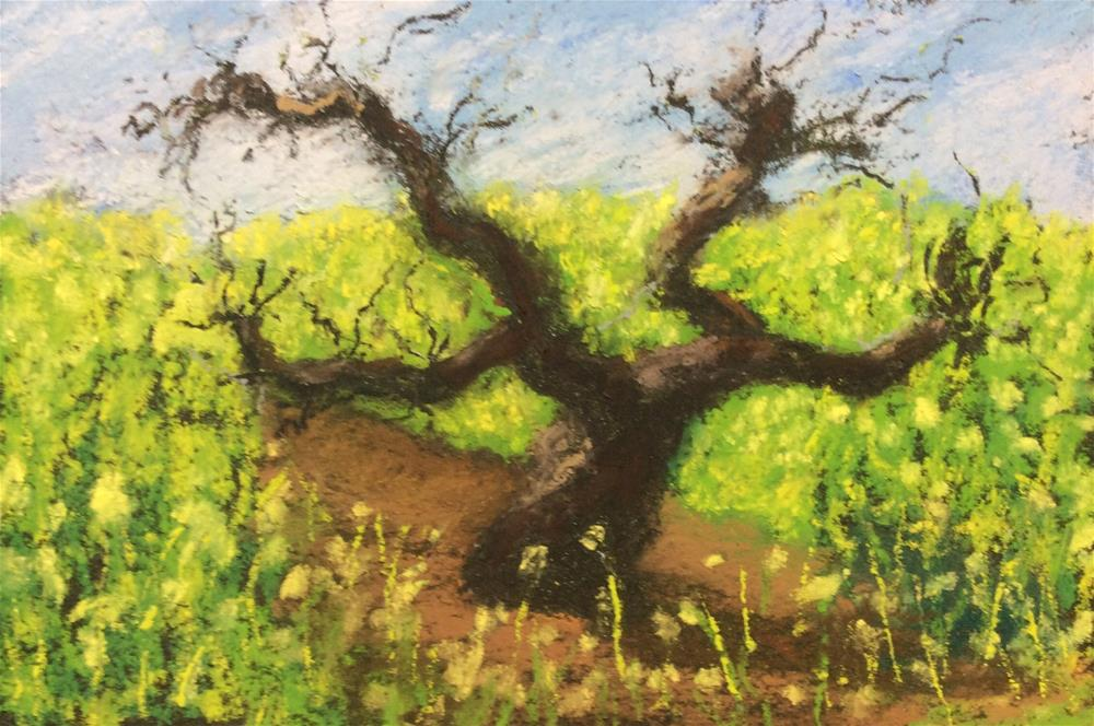 """The Old Vine"" original fine art by Marti Walker"