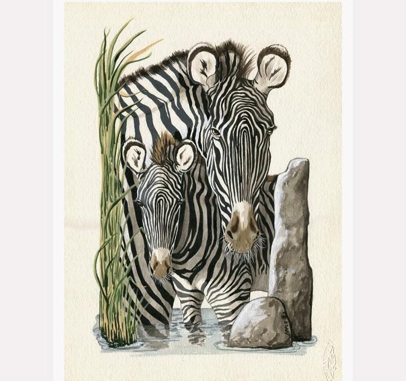 """Zebra realistic wildlife animal art portrait by L.Apple"" original fine art by Linda Apple"