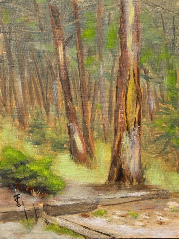 """Evergreen"" original fine art by Jane Frederick"
