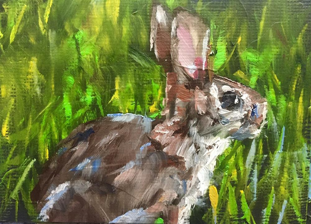"""Cottontail"" original fine art by Gary Bruton"