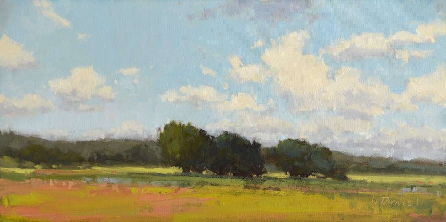 """Ranch Sky and Panorama Photo!"" original fine art by Laurel Daniel"