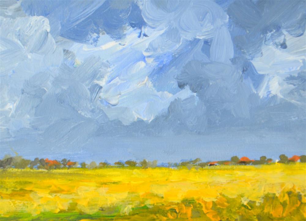 """""""Coleseedfields in the polder 3"""" original fine art by Wim Van De Wege"""