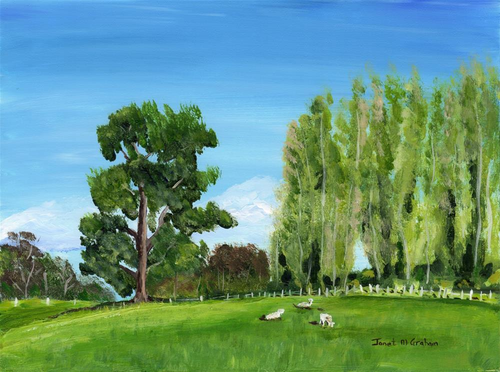 """Green Pastures"" original fine art by Janet Graham"