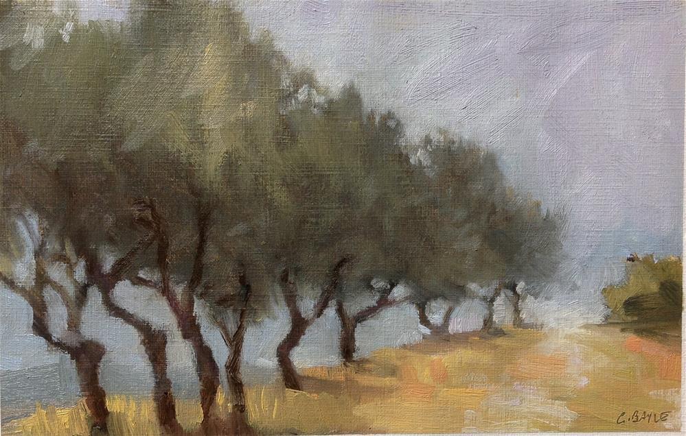 """Tuscan field"" original fine art by Christine Bayle"