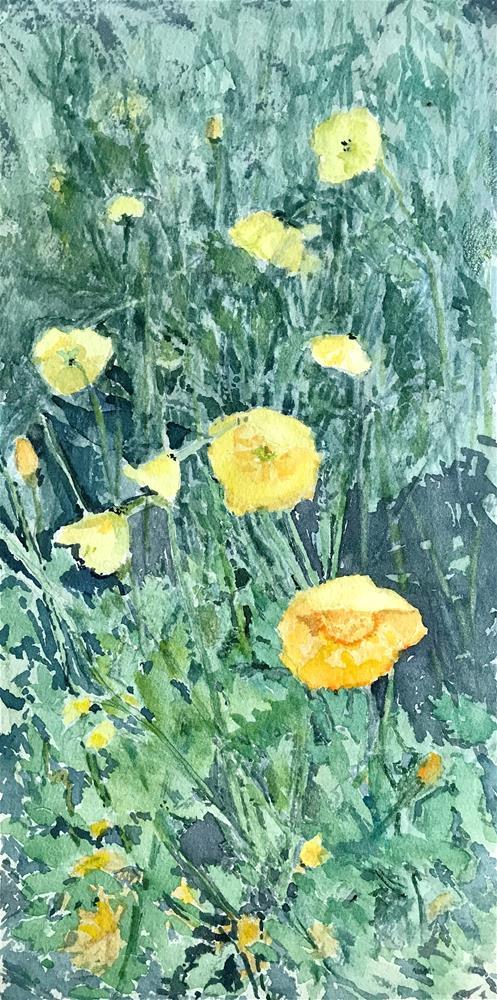 """Yellow flowers in the field"" original fine art by Betty Argiros"