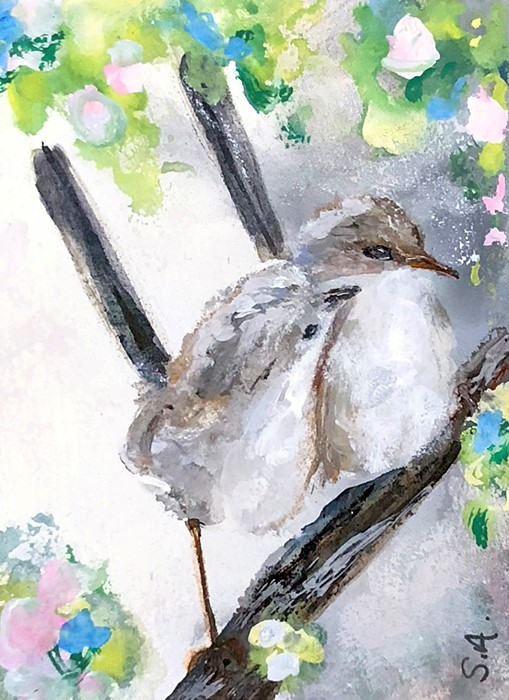 """Little Wrens"" original fine art by Sunny Avocado"