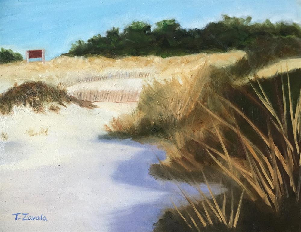 """Jones Beach West End"" original fine art by Theodora Zavala"