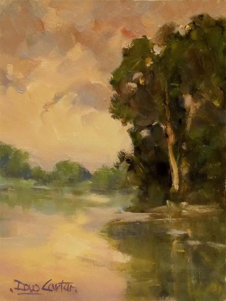 """SUNLIT COVE"" original fine art by Doug Carter"