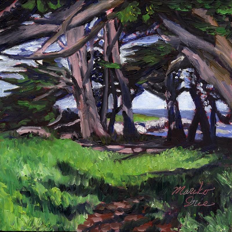 """Sunny Cypress Cove"" original fine art by Mariko Irie"