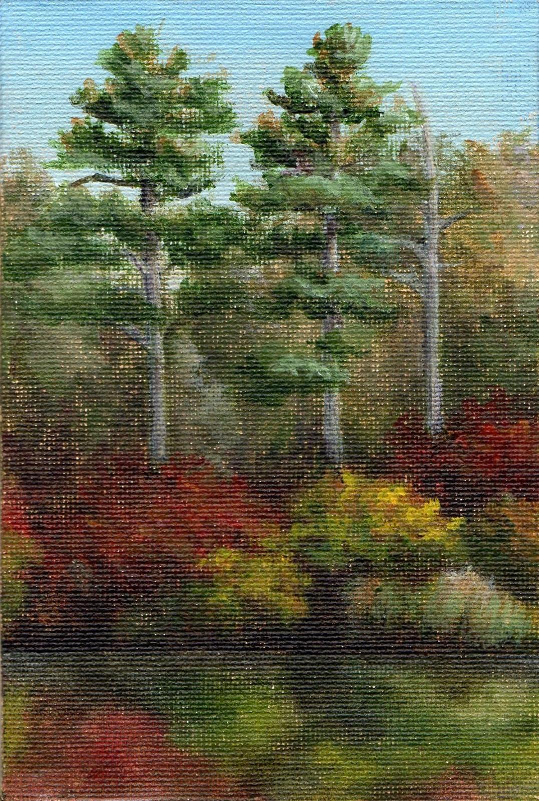 """Mary Herrick Forest Pond"" original fine art by Debbie Shirley"