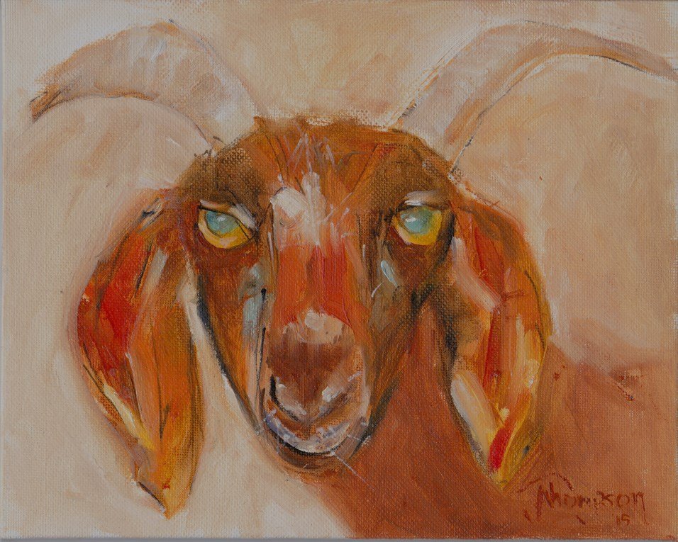 """Brown Goat"" original fine art by Norma Thompson"