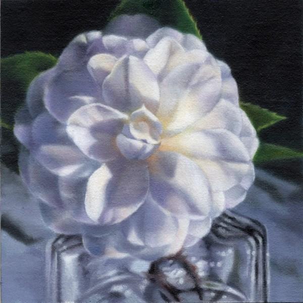 """""""Ani's Camellia (SOLD)"""" original fine art by Barbara Fox"""
