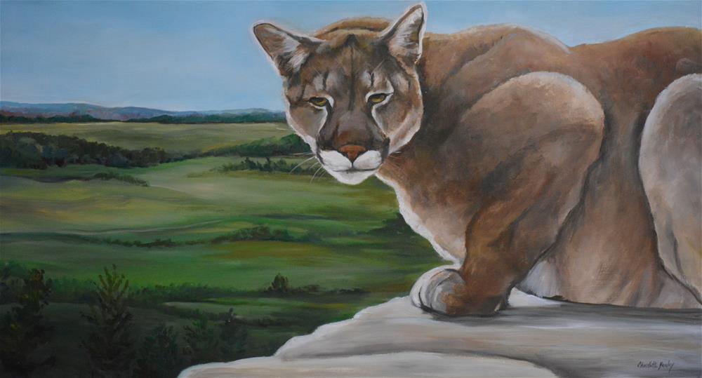 """Cougar"" original fine art by Charlotte Yealey"